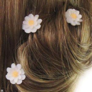 3848-m840-pics-a-cheveux-paquerette